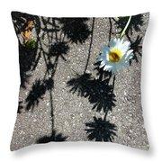 Shadow Daisy Throw Pillow