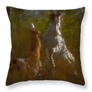 Shadow Fighting Throw Pillow