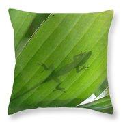 Shadow Lizard Throw Pillow