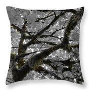 Shadow Moss Throw Pillow