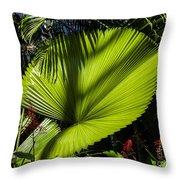 Shadow On A Ruffled Fan Palm Throw Pillow