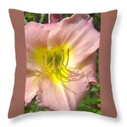 Shadow On The Petals  Throw Pillow
