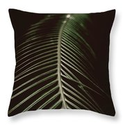 Shadow Palm Throw Pillow