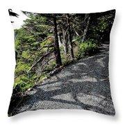 Shadow Path Throw Pillow