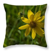 Shadow Pedals Throw Pillow