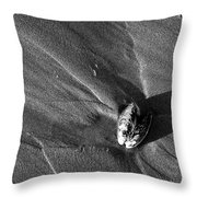Shadow Shell Throw Pillow