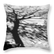 Shadow Tree  Herrick Lake  Naperville Illinois Throw Pillow