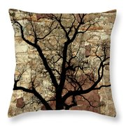 Shadow Wall Throw Pillow