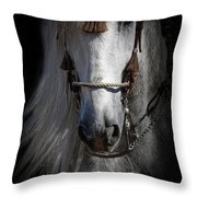 Shadowed Andalusian  Throw Pillow