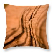 Shadowing Time Throw Pillow