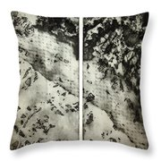 Shadows And Lace Throw Pillow