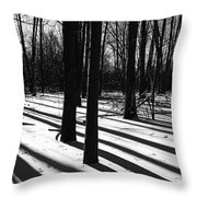 Shadows And Tracks Throw Pillow