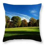 Shadows And Trees Of The Afternoon - Monmouth Battlefield Park Throw Pillow
