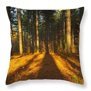 Shadows In Forrest  Throw Pillow