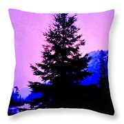 Shadows In The Canyon Throw Pillow