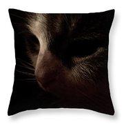 Shadows Of A Cat Throw Pillow
