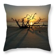 Shadows Of Driftwood Throw Pillow