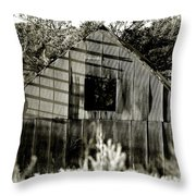 Shadows Of Time  Throw Pillow