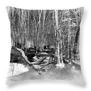 Shadows Of Winter Throw Pillow