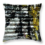 Shadows On The Past Posterized Throw Pillow
