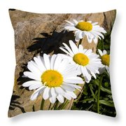 Shadows On The Rock Throw Pillow