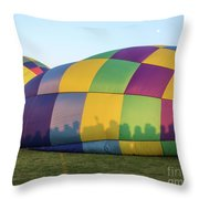 Shadows On The Side Throw Pillow