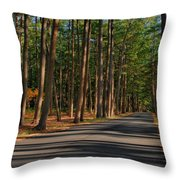Shadows Road - Ocean County Park Throw Pillow