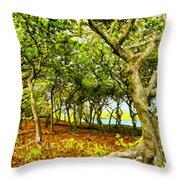 Shady Grove At Wai'anapanapa Throw Pillow