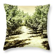 Shady Grove Palm Springs Throw Pillow