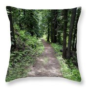 Shady Grove Path Throw Pillow