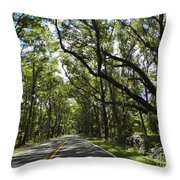 Shady Road Throw Pillow
