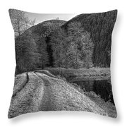 Shady Trail Tonemapped Throw Pillow