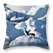 Shag On Ice Throw Pillow