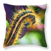 Shagerpillar Throw Pillow by Bill Tiepelman