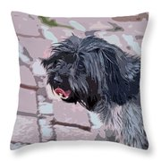 Shaggy Pup Abstract Throw Pillow