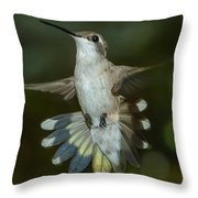 Shake Your Tail Feathers Throw Pillow