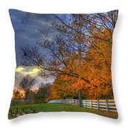 Shaker Fall Geese Throw Pillow