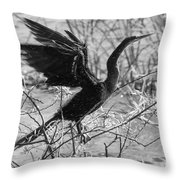 Shaking Off Water, Black And White Throw Pillow