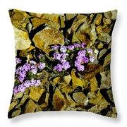 Shale Garden.  Throw Pillow