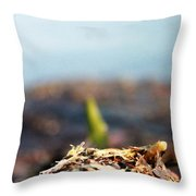 Shallow Throw Pillow