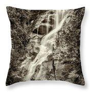 Shannon Falls - Bw Throw Pillow