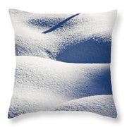 Shapes Of Winter Throw Pillow