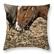 Sharing The Hay Throw Pillow