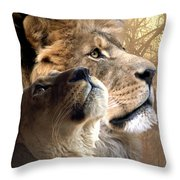Sharing The Vision Throw Pillow by Bill Stephens