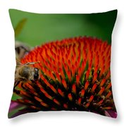 Sharing The Wealth Throw Pillow