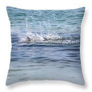 Shark Catching A Fish Throw Pillow