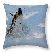 Shark Dog Throw Pillow