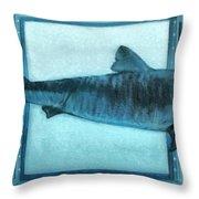 Shark In Magic Cubes - 2 Of 3 Throw Pillow