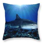 Shark In The Dark Throw Pillow