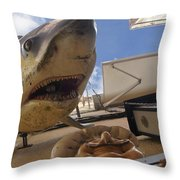 Shark On The Wall Throw Pillow